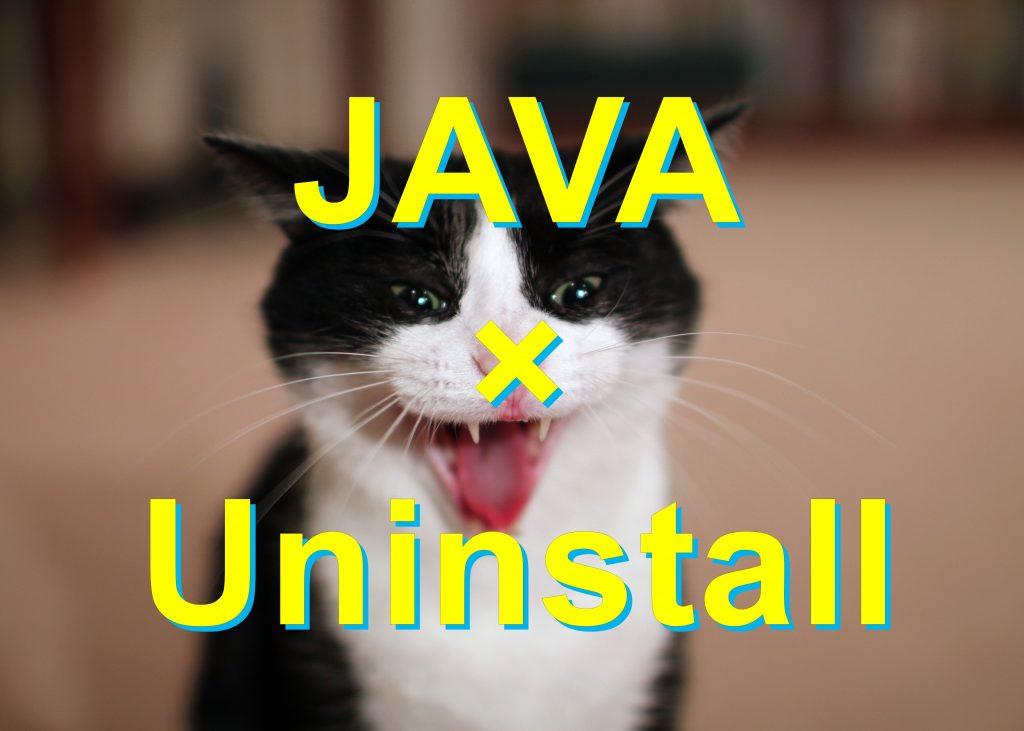 java-uninstall-win10