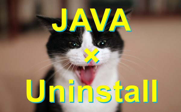 java-uninstall-win10