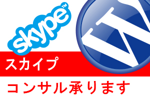 wp-skype-consulting