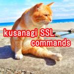 kusanagi-ssl-3-commands